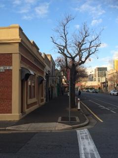 Waymouth St & Gray St